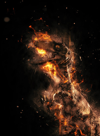 engulfed: Flaming prehistoric dinosaur or dragon engulfed in fire on a black background in a conceptual image