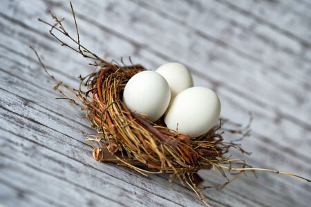 incubation: Close up Three White Chicken Eggs in a Nest on a Wooden Table in a Diagonal Shot Stock Photo