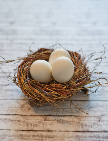 roost: Close up Three Chicken Eggs in a Hen Roost on White Wooden Table for Easter Concept