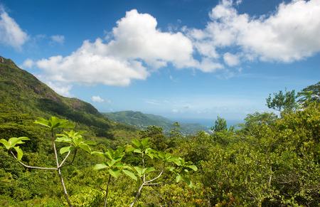 fantastic view: Fantastic View at Morne Seychellois National Park on Mahe Island, Seychelles