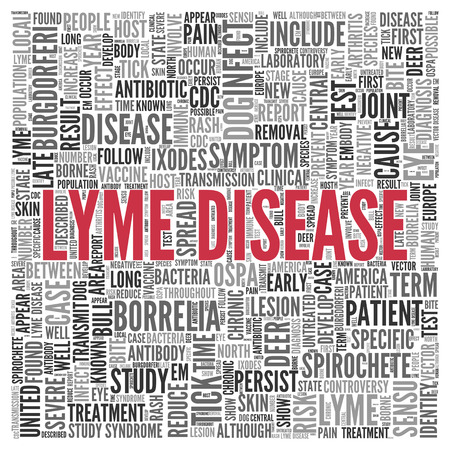 Close up Red LYME DISEASE Text at the Center of Word Tag Cloud on White Background. Stock Photo