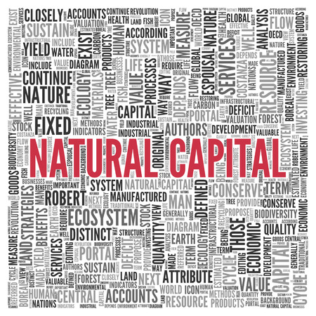 economic cycle: Close up Red NATURAL CAPITAL Text at the Center of Word Tag Cloud on White Background.