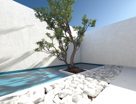 outdoor living: Modern exterior walled patio with a tropical tree and ornamental bed of white rocks for a sunny outdoor living area and healthy lifestyle. 3d Rendering. Stock Photo