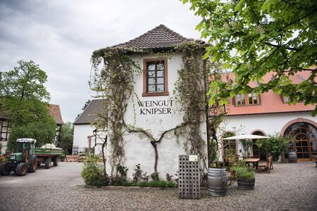 redwine: Facade of Vine Covered Tower at Knipser Winery in Laumersheim, Germany