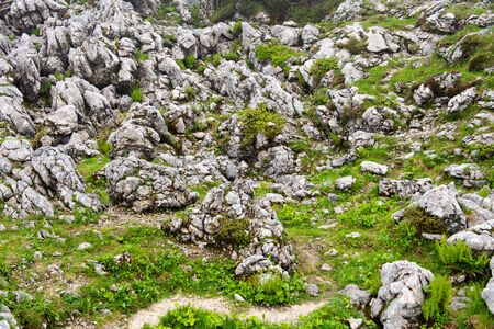weatherworn: High angle view of exposed rock interspered with greenery, narrow path visible