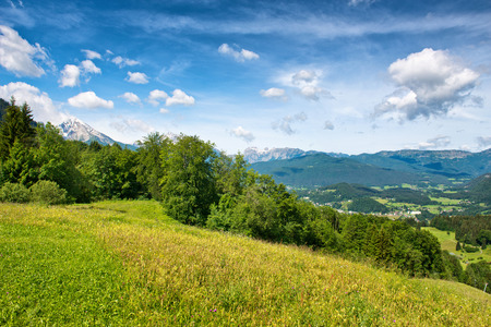grassy field: Green grassy field with trees against a scenic mountain backdrop beneath blue sky with white clouds
