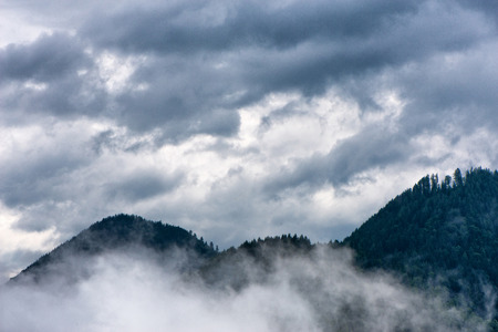 cloudy moody: Scenic view of tree covered mountains beneath a moody cloudy sky, white mist in foreground