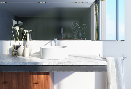 Modern Architectural White Home Washroom Interior Design with Round Basin, Large Mirror and Vases with Flowers.