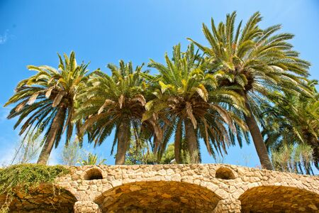 stone arches: BARCELONA, SPAIN - MAY 02: Palm Trees and Stone Arches at Park Güell ( UNESCO World Heritage Site), hill of El Carmel, Grà cia (district), Barcelona, Catalonia, Spain on May 02, 2015