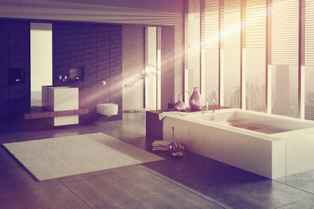 bathroom: A 3D rendering of a modern bathroom with single basin and jacuzzi
