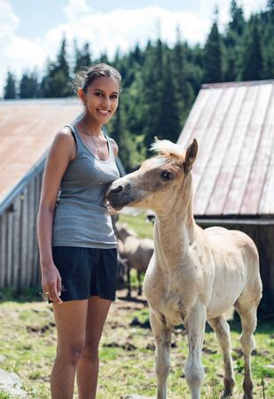 palomino: Young woman in casual shorts standing petting a young palomino foal in a farm pasture with barns a she smiles happily at the camera Stock Photo