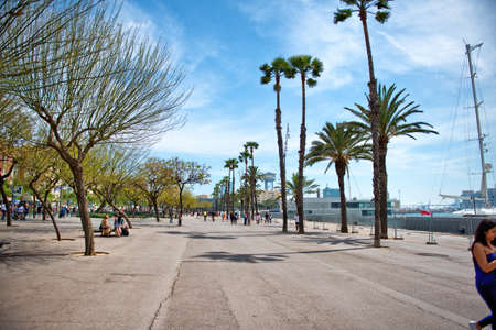 seafront: View of the waterfront promenade, Barcelona, Spain lined with tropical palm trees running past the quays with moored yachts with people walking enjoying the view in the distance Editorial