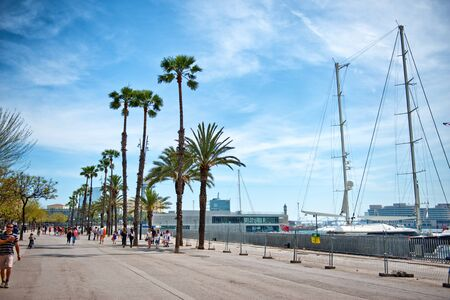 waterfront: Scenic view of people walking along the waterfront esplanade at the harbour, Barcelona , Spain, with moored yachts at the quay and tropical pam trees