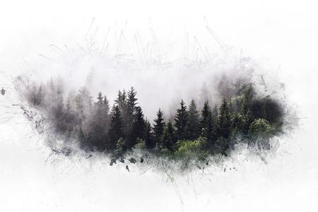 Artistiek etherisch evergreen naaldbos met een grote witte rand die lijkt op mistige wolken en veel copyspace Stockfoto