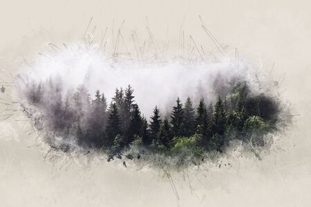 Foggy dawn in an artistic evergreen forest with a wide border effect resembling fog, mist or clouds creating a dreamy ethereal atmosphere Stock Photo
