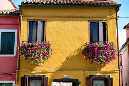 flower boxes: Colorful flower boxes filled with pink flowers on a traditional brightly painted yellow fishermans house in Burano, Venice, Italy