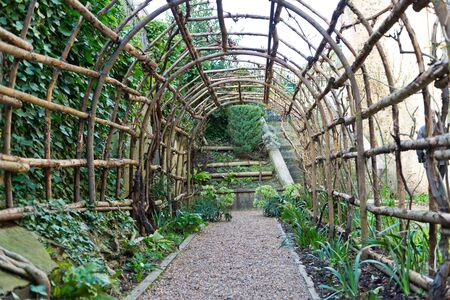 trellis: Seedlings beside stone path of long wooden garden trellis outside of the medieval era Winchester Castle in the United Kingdom Stock Photo