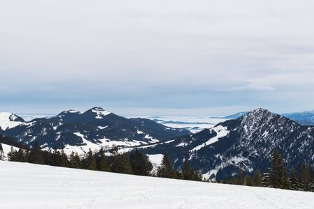 evergreen trees: Alps mountain range and small forest of evergreen trees in background of ski hill
