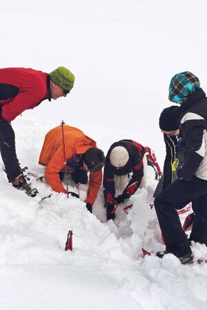 rescue: WERTACHER HOERNLE, WERTACH, GERMANY - FEBUARY 28 2016: Team of alpine rescuers digging in snow for a buried victim standing grouped around an excavated hole as they train using new techniques for rapid response