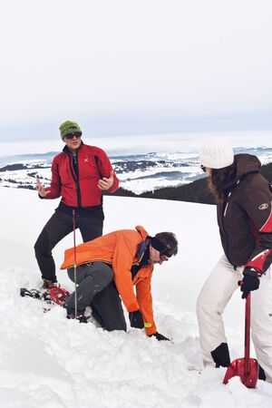 off piste: WERTACHER HOERNLE, WERTACH, GERMANY - FEBUARY 28 2016: Mountain rescue team training in the alps in deep fresh winter snow as they attempt to locate a buried victim on a high mountain slope off-piste