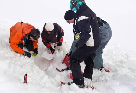 paramedics: WERTACHER HOERNLE, WERTACH, GERMANY - FEBUARY 28 2016: Team of Alpine rescuers and paramedics training in the latest search and rescue techniques locating a victim buried under snow