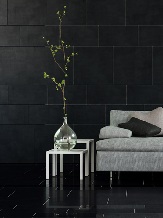sombre: Architectural Interior of Modern Living Room with Sofa, Side Tables and Simple Plant in Glass Vase with Dark Floor and Walls