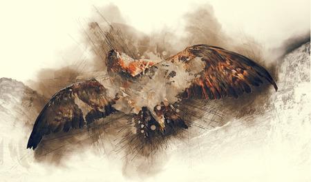 arte abstracto: Resumen ilustración de volar Eagly. Pintura arte del bosquejo con las salpicaduras.