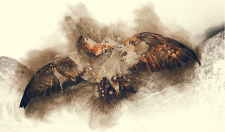 Abstract illustration of flying eagly. Paint sketch art with splatters.