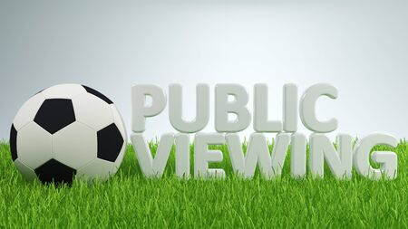 viewing angle: Single soccer ball beside public viewing text over green grass with gray gradient background Stock Photo
