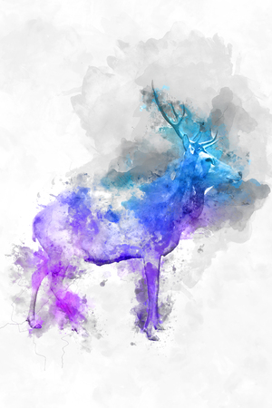 daubs: Colorful artistic watercolor of a wild buck with branched antlers with a splash effect overlay of magenta, purple and blue paint , profile view