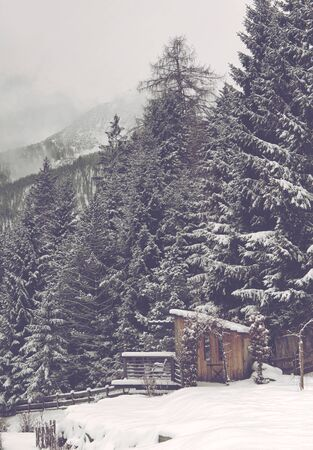 timberland: Small Wooden Rural Farm Shack at Edge of Thick Evergreen Forest on Snow Covered Mountainside with Alp Peaks in Background on Overcast Day Stock Photo