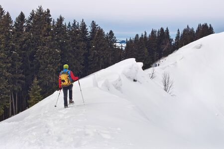 traverse: Cross country skier or person in snowshoes using poles to safely traverse a steep snow-covered mountain slope above the tree line in alpine scenery Stock Photo