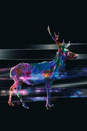 buck: Profile of horned buck in multiple colors standing over black background with motion effect and copy space Stock Photo