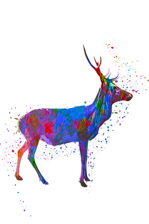 buck: Profile of horned buck in various splattered paint colors standing over white background with copy space Stock Photo