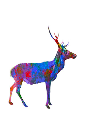 painterly effect: Side view of horned buck in multiple paint colors standing over white background with copy space