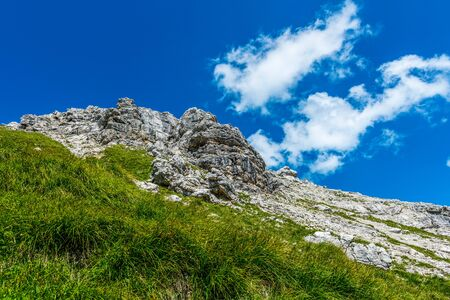 allgau: Low angle view of peaceful mountain scenery with tall grasses growing in the foreground and fluffy clouds overhead Stock Photo