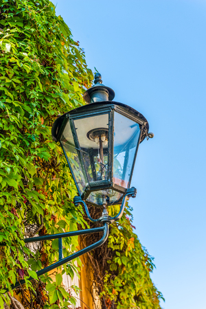electric fixture: Old metal lantern style exterior light mounted on a creeper covered wall of a yellow building viewed close up against a blue sky Stock Photo