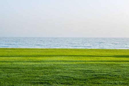 Ocean on horizon with grass in foreground. Includes copy space in the clear blue sky above. Stock Photo