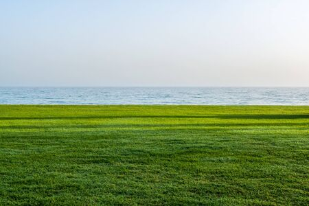 Lush green grass near ocean waterfront with clear blue sky at the horizon. Includes copy space. Stock Photo