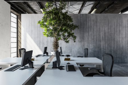 Modern interior of well lit office with several desks and huge green tree against grey concrete wall. 3d Rendering.