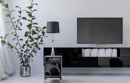 Planta de interior cerca de televisor y lámpara moderna con sombra en el salón con diseño interior minimalista, paredes blancas y mobiliario negro brillante. Representación 3D. Foto de archivo
