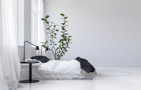 white interior: Light bright white modern bedroom interior with a comfortable bed with throws alongside a potted houseplant and bedside table with lamp. 3d Rendering.
