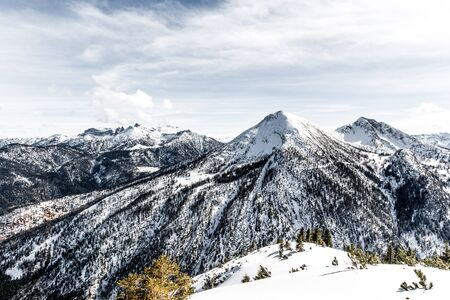 snowcapped: Snow-capped forested alpine peak in a winter landscape viewed from a snowy mountain plateau or summit Stock Photo
