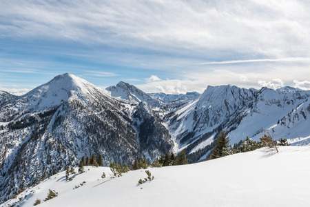 snowcapped: Pristine fresh white winter snow in the alps overlooking high snow-capped alpine peaks and forested valleys in a scenic landscape
