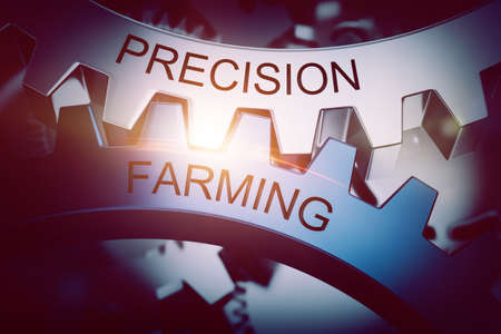 co operative: Precision and farming gears meshing, co-operative concept. 3d Rendering.