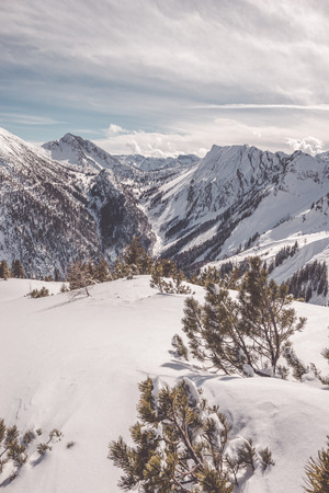 Landscape of beautiful mountains and woods covered with snow in winter with high peaks and cloudy sky on background. Copy space