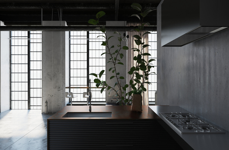 Small compact kitchen in a loft conversion with U-shaped cabinets with a hob and sink, houseplants and long windows letting in daylight. 3d Rendering.