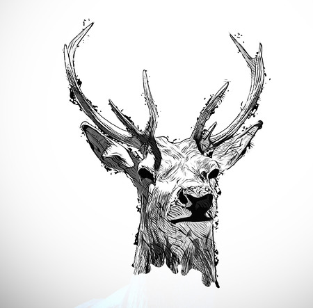 Modern abstract design deer head illustration isolated on white