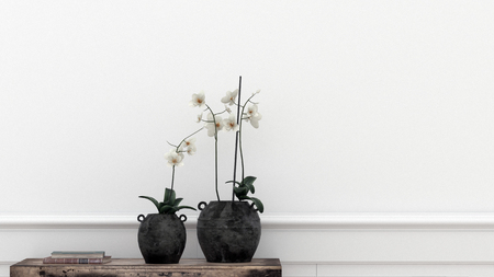 interior decoration: Two potted plants in front of white wall. 3d Rendering.
