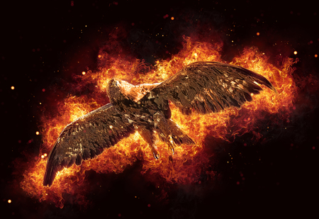 Burning flying hawk or eagle with outstretched wings engulfed in fiery orange flames and exploding sparks over a dark background